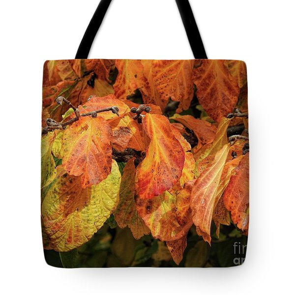 Tote Bag featuring the photograph Golden by Peggy Hughes