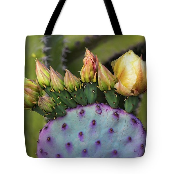 Tote Bag featuring the photograph Golden Prickly Pear Buds  by Saija Lehtonen