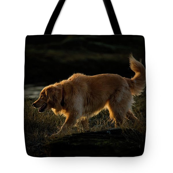 Tote Bag featuring the photograph Golden by Randy Hall