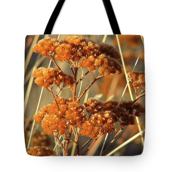 Golden Reach Tote Bag