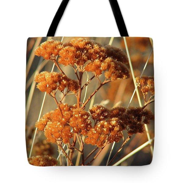 Golden Reach Tote Bag