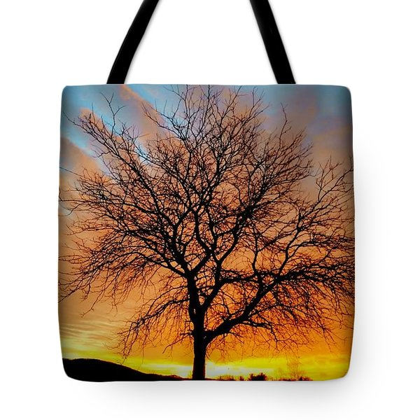 Golden Reflection Tote Bag by Dan Stone