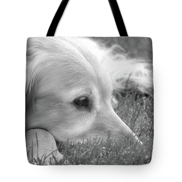 Golden Retriever Dog In The Cool Grass Monochrome Tote Bag by Jennie Marie Schell