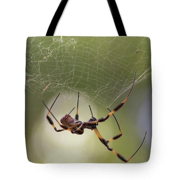 Golden-silk Spider Tote Bag