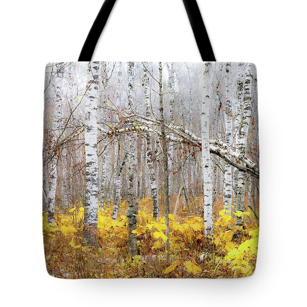 Golden Slumbers Tote Bag