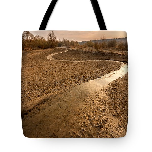 Tote Bag featuring the photograph Golden Stream by Davorin Mance