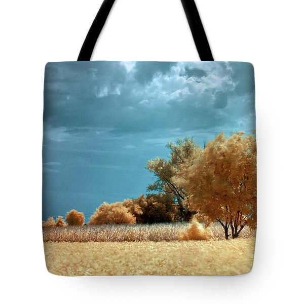 Tote Bag featuring the photograph Golden Summerscape by Helga Novelli