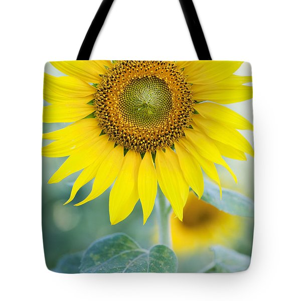 Golden Sunflower Tote Bag by Tim Gainey
