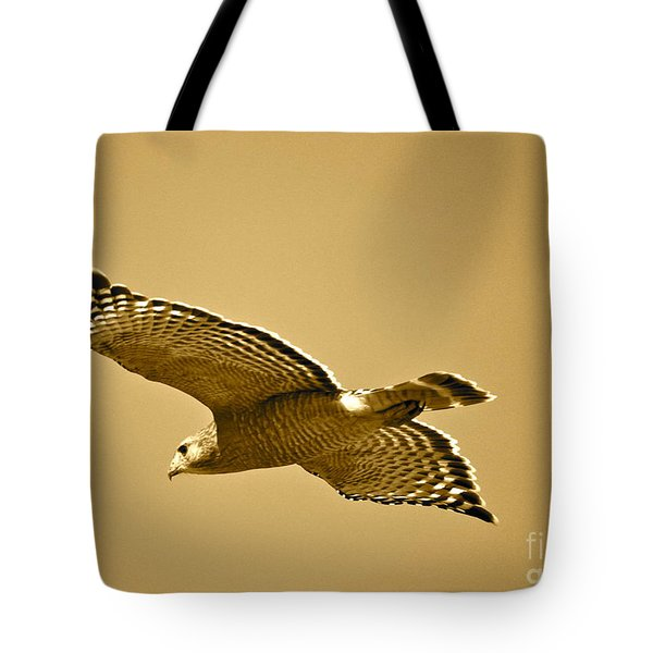Golden Sunlight On Hawk Tote Bag by Carol Groenen