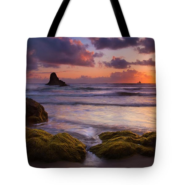Golden Tides Tote Bag by Mike  Dawson
