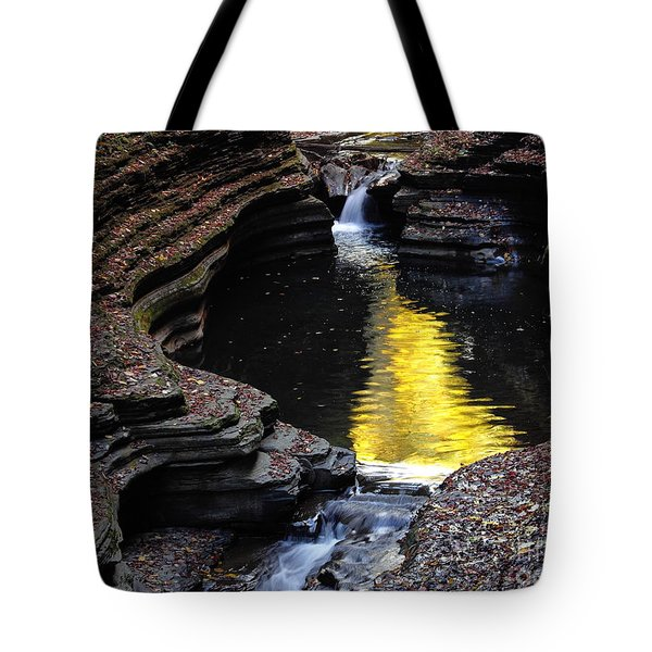 Tote Bag featuring the photograph Golden Water by Vilas Malankar