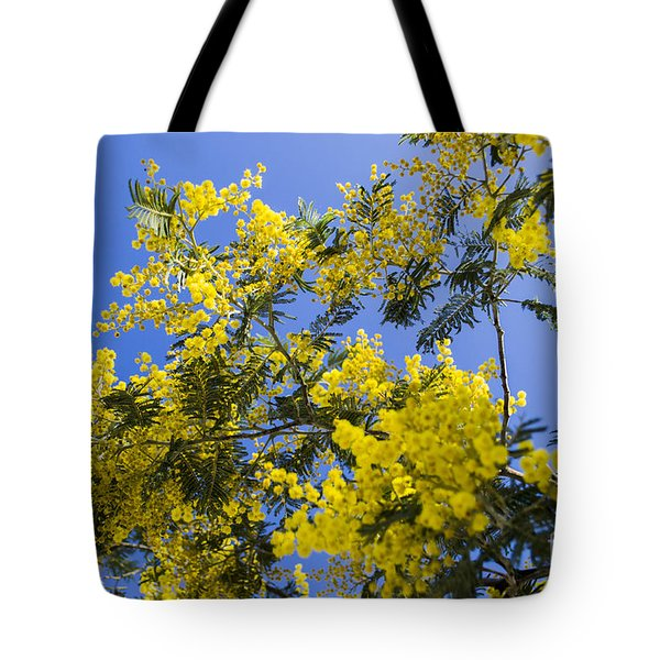 Tote Bag featuring the photograph Golden Wattle by Angela DeFrias