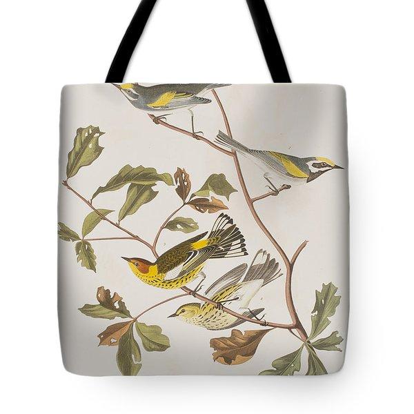 Golden Winged Warbler Or Cape May Warbler Tote Bag by John James Audubon
