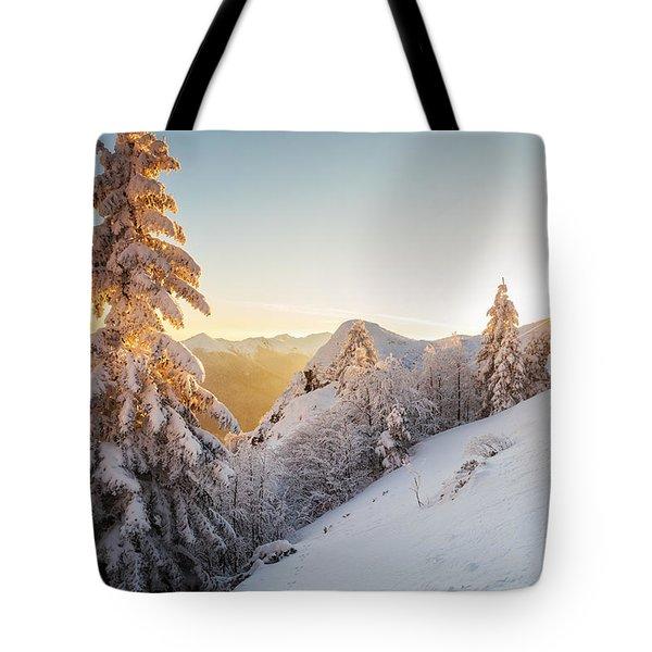 Golden Winter Tote Bag by Evgeni Dinev