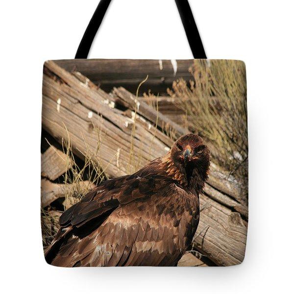 Goldeneagle1 Tote Bag