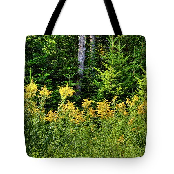Tote Bag featuring the photograph Goldenrod In The Adirondacks by David Patterson