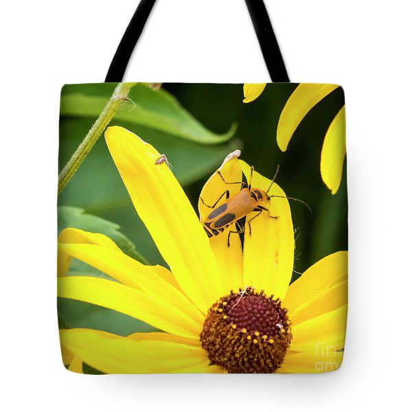 Tote Bag featuring the photograph Goldenrod Soldier Beetle by Ricky L Jones