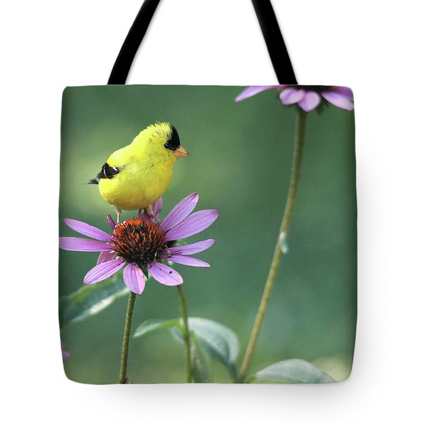 Goldfinch On A Coneflower Tote Bag