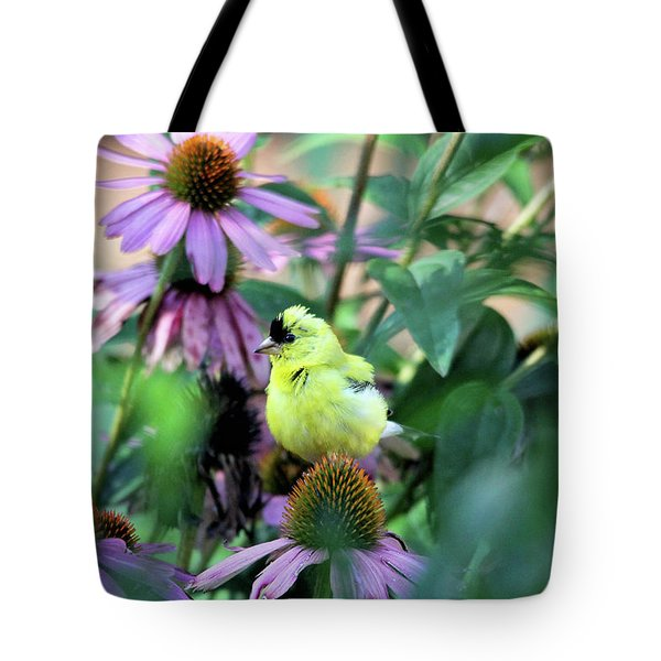 Goldfinch On Coneflowers Tote Bag