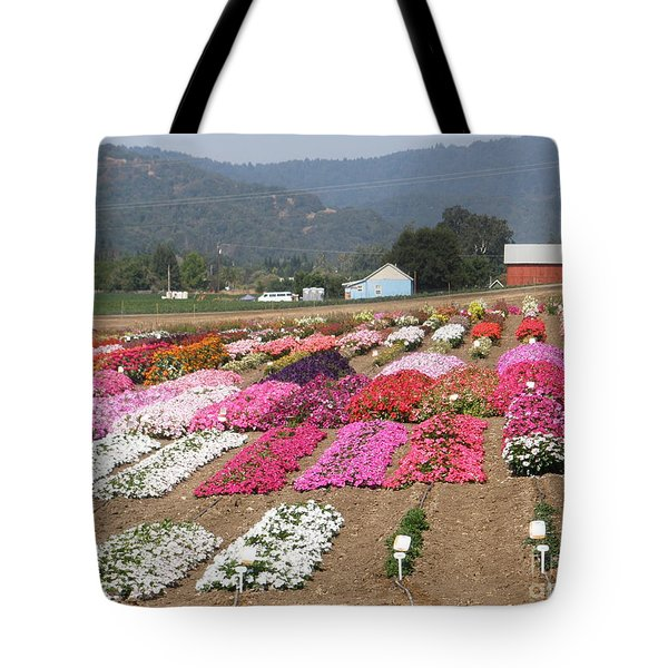 Goldsmith Seed Company Tote Bag