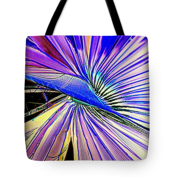 Tote Bag featuring the photograph Gone Gone Forever by Antonia Citrino