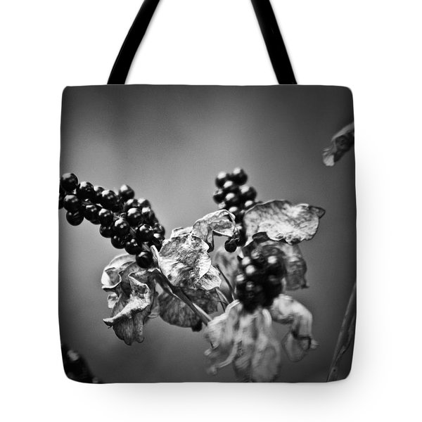 Gone To Seed Blackberry Lily Tote Bag by Teresa Mucha