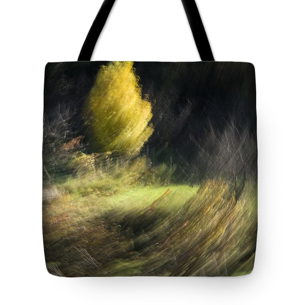 Tote Bag featuring the photograph Gone With The Wind by Raffaella Lunelli