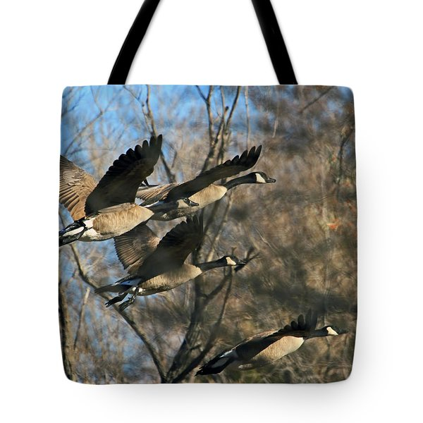 Tote Bag featuring the photograph Gone With The Wings by Donna Kennedy