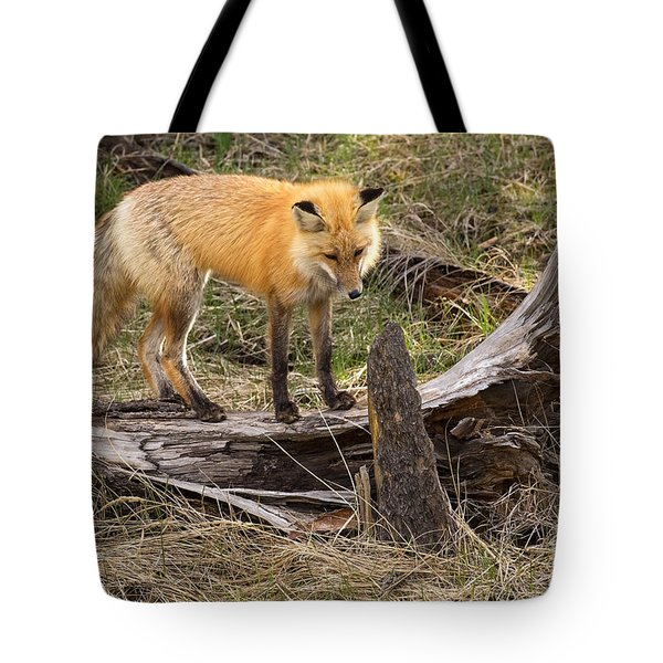 Tote Bag featuring the photograph Good Listener by Aaron Whittemore
