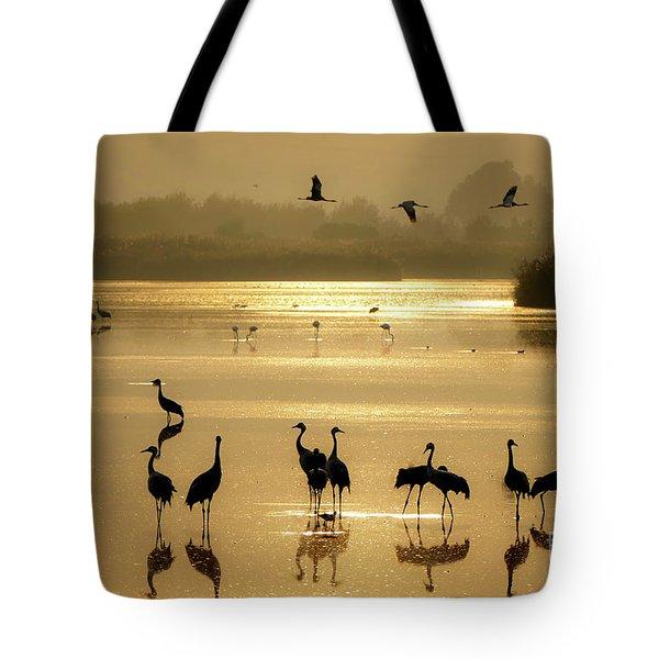 Good Morning Chula Lake Tote Bag
