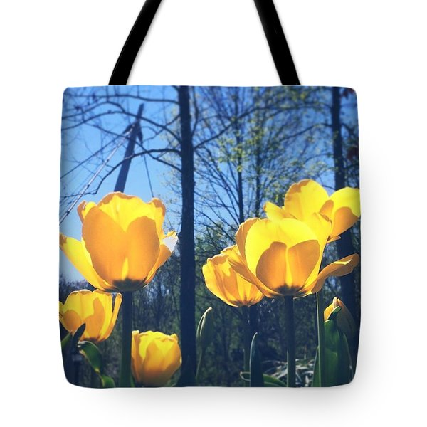 Good Morning From Greenville! 🌼☀️ Tote Bag by Cassandra M Photographer