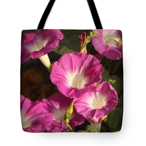 Tote Bag featuring the photograph Good Morning, Glory by Sheila Brown