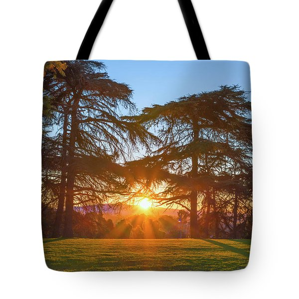 Good Morning, Good Morning Tote Bag
