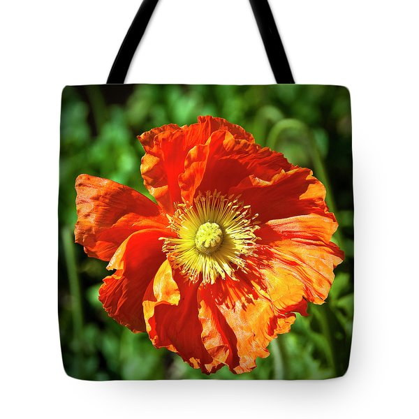 Good Morning Sunshine Tote Bag by Tamyra Ayles