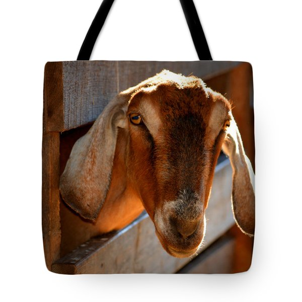 Good Morning To You  Tote Bag