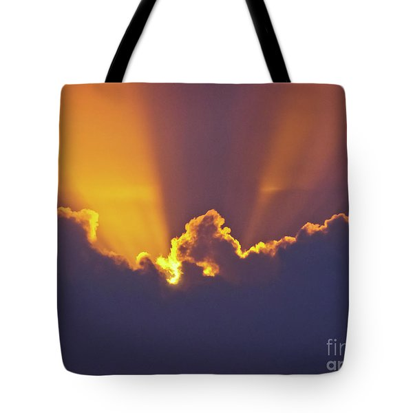 Tote Bag featuring the photograph Good Night Sunshine by Terri Waters