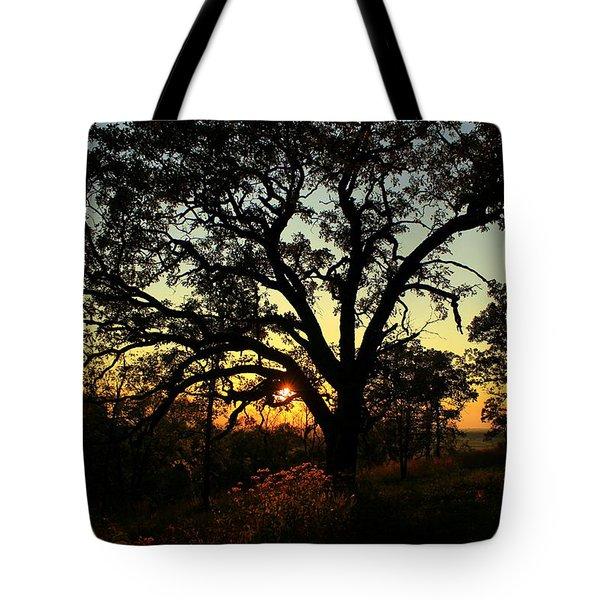 Good Night Tree Tote Bag