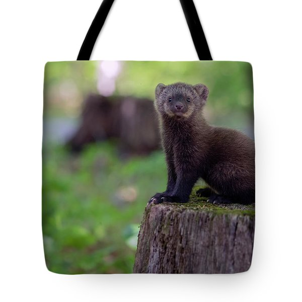 Good Place To See Tote Bag