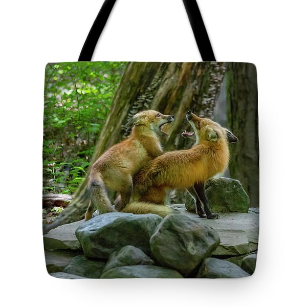 Tote Bag featuring the photograph Good To Meet You Again by Dan Friend