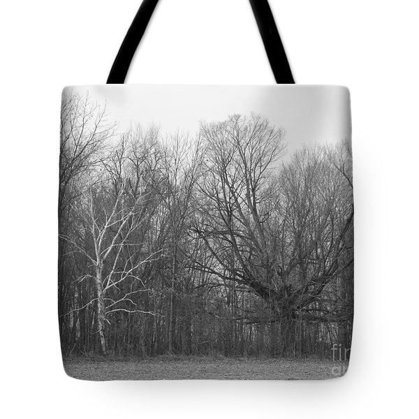 Good Vs Evil Trees Tote Bag by Erick Schmidt