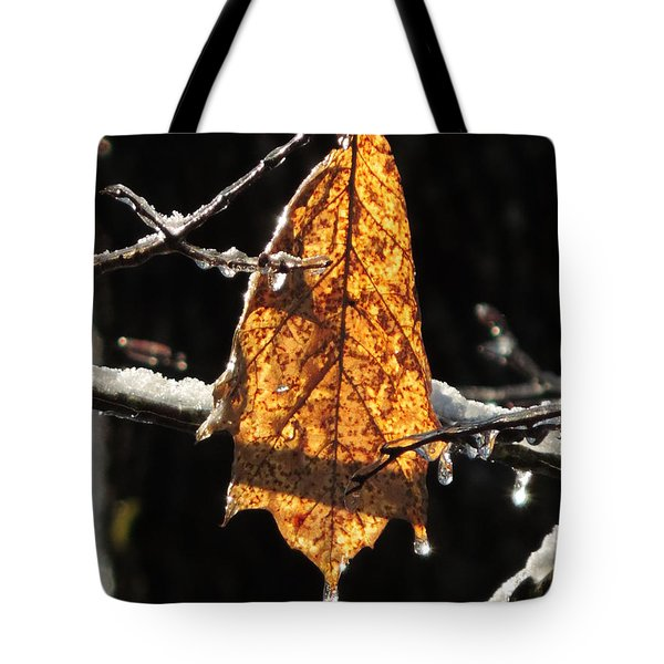 Goodbye To Autumn Tote Bag