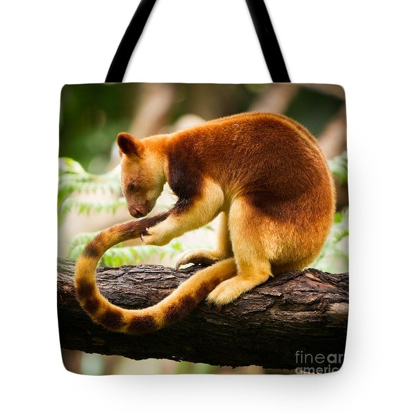 Goodfellows Tree Kangaroo Tote Bag