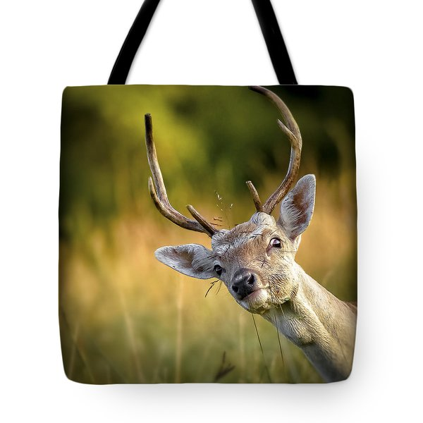 Goodmorning  Tote Bag