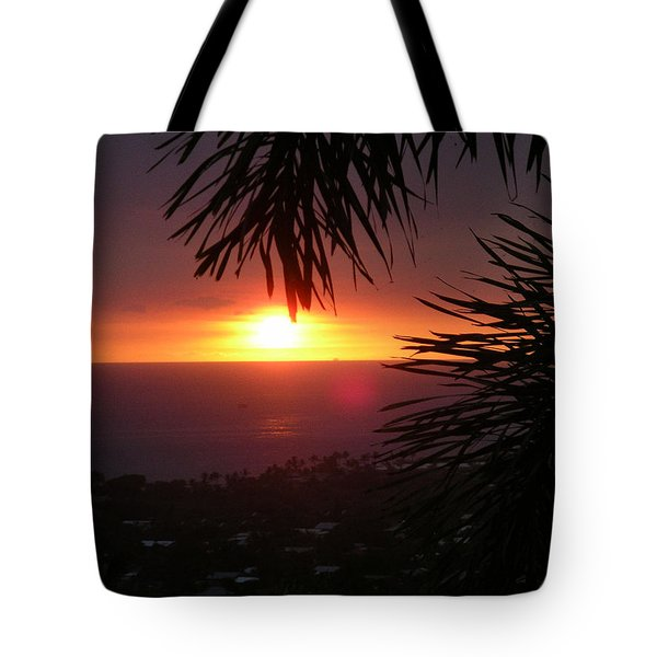 Tote Bag featuring the photograph Goodnight - Final In A Series Of Four by Karen Nicholson