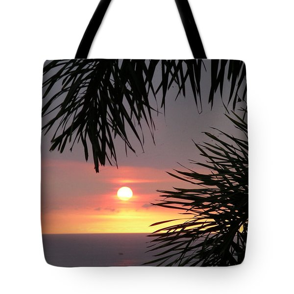 Goodnight - First In A Series Of Four Tote Bag by Karen Nicholson