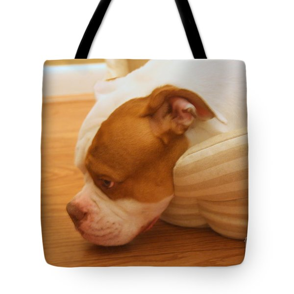 Goodnight Lady Tote Bag