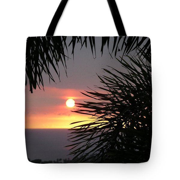 Tote Bag featuring the photograph Goodnight - Second In A Series Of Four by Karen Nicholson