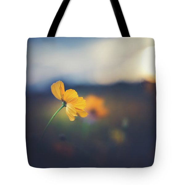 Tote Bag featuring the photograph Goodnight Sun by Shane Holsclaw