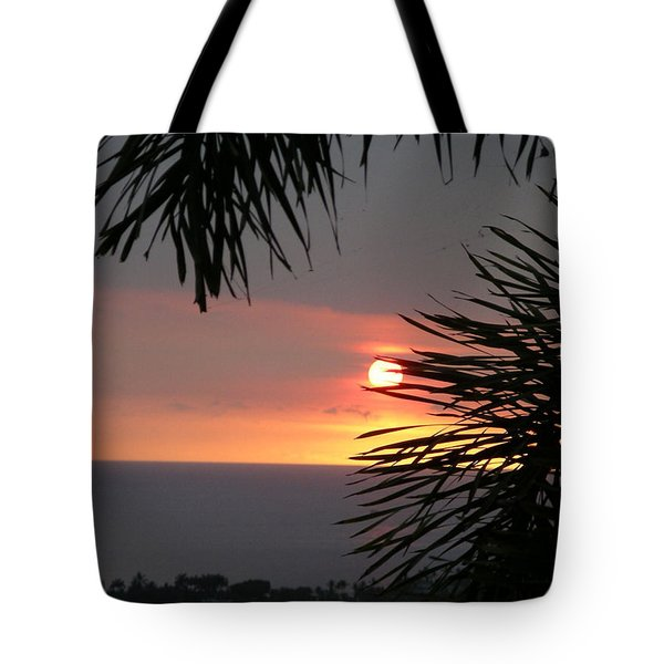 Tote Bag featuring the photograph Goodnight - Third In A Series Of Four by Karen Nicholson
