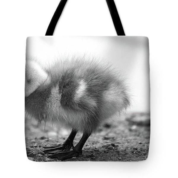 Goose Chick Tote Bag